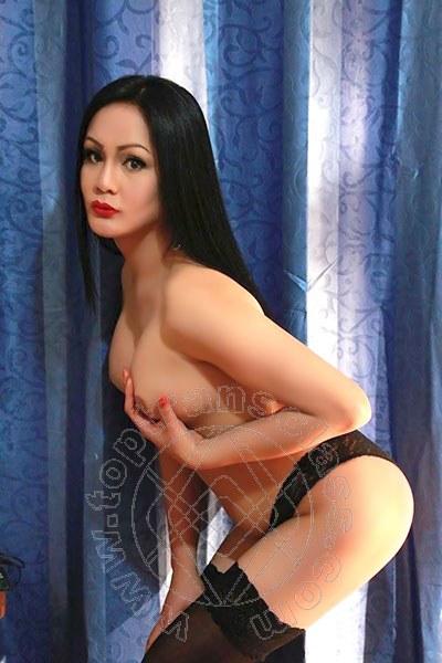Angelika Asiatica  FERRARA trans 3245611031