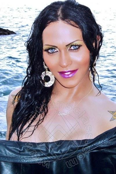 Transex Verona Sandy Ferraro Fox